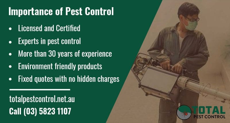 Importance of Pest Control Shepparton